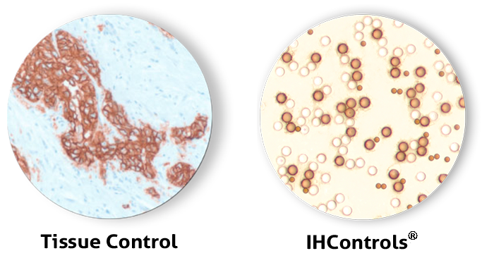 immunohistochemistry calibrators, IHC calibrators
